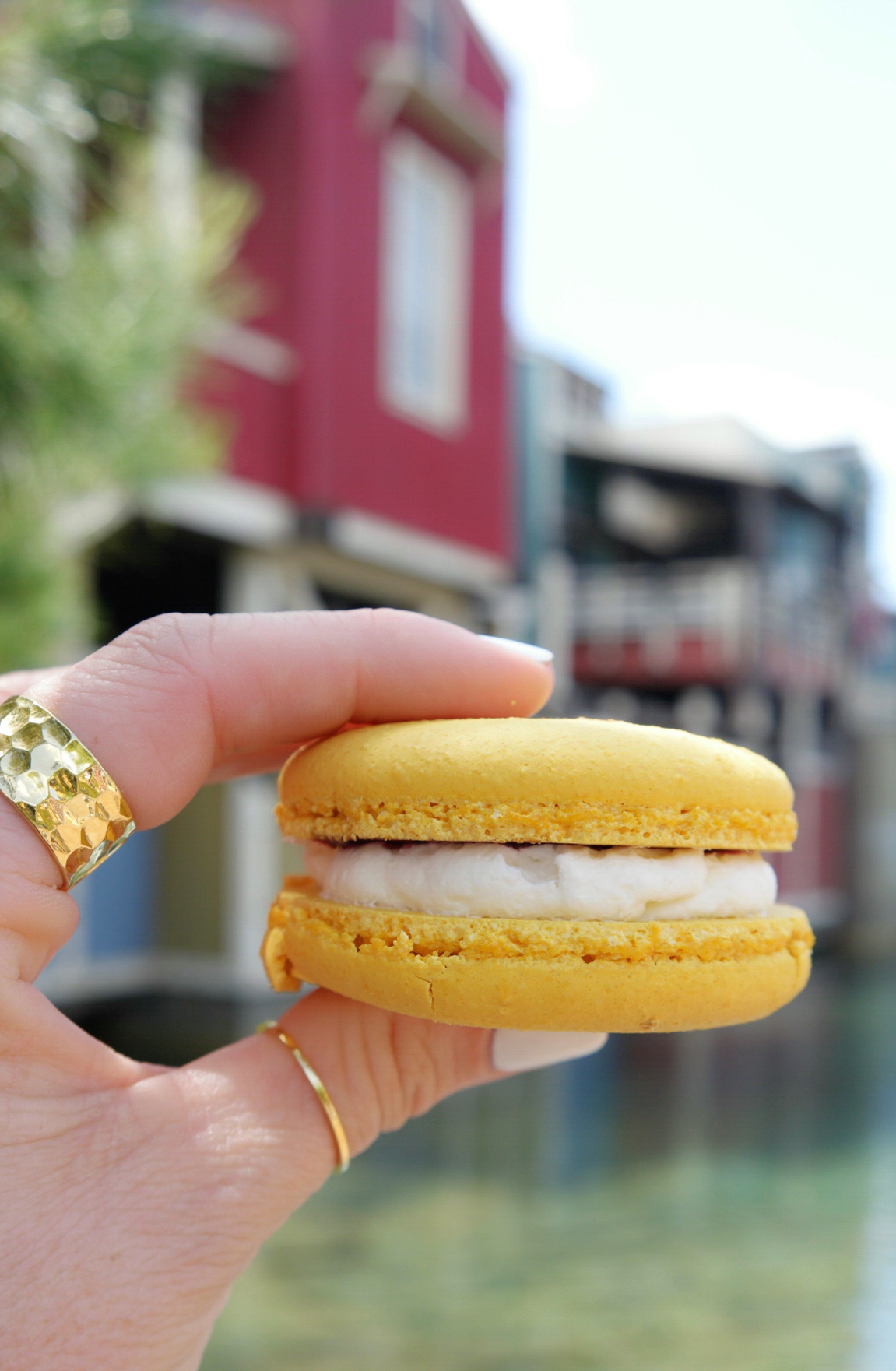 Meyer Lemon Macaron with a Blueberry Coulis Center