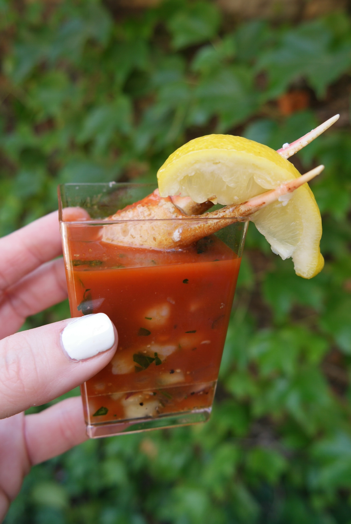 Chilled Shrimp & Snow Crab Cocktail